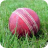 cricket, cricket ball, sport