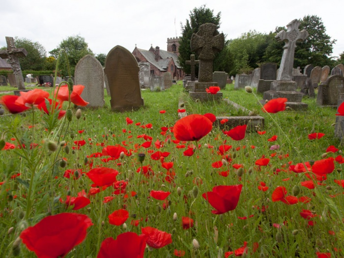 Tattenhall-Churchyard-commemorative-poppies